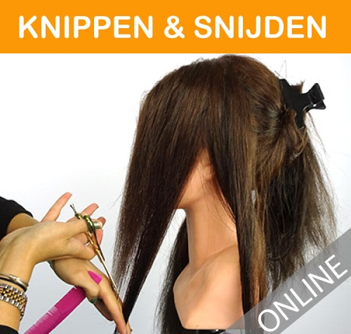 knippen-snijden-categorie-cirsus-hair-extensions-hairextensions