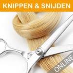 cursus-hairextensions-online